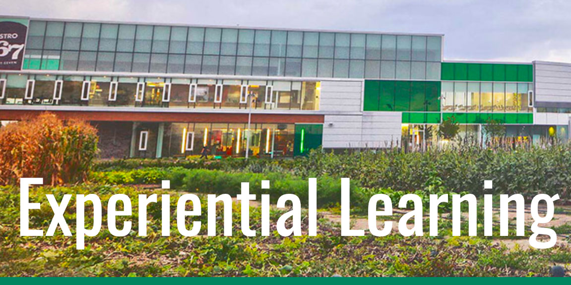 Experiential Learning banner