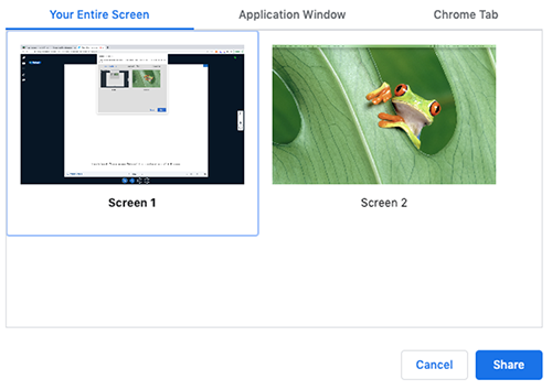 Virtual Classroom interface. Screen sharing options with Entire Screen - Screen 1 selected.