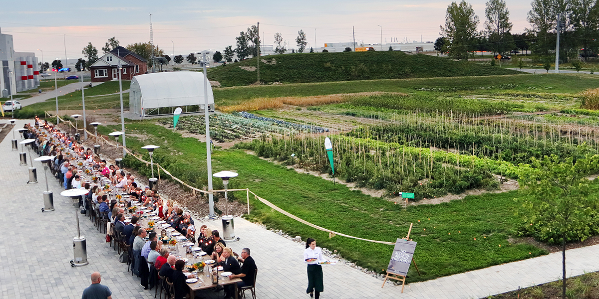Wide angle view of harvest dinner